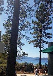 View of the pines and lake from the cafe in Sand Harbor